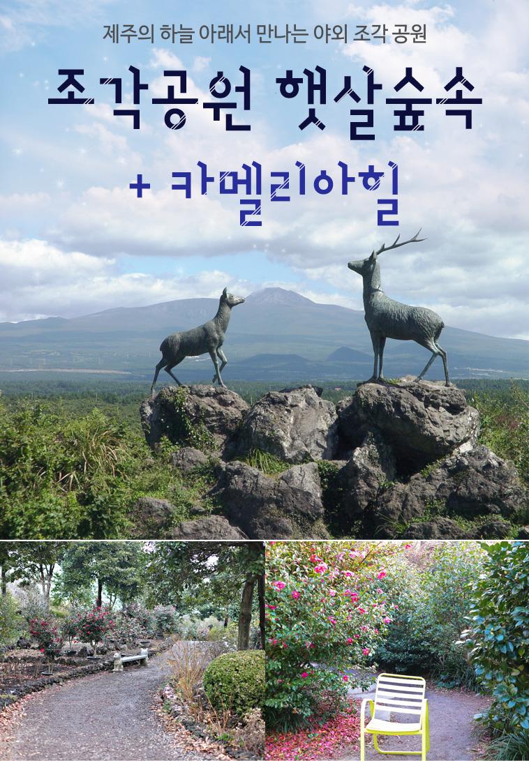 조각공원-햇살숲속+카멜리아힐_01.jpg