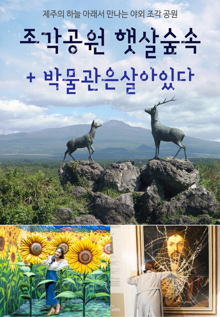 조각공원-햇살숲속+제주-박물관은살아있다_01.jpg