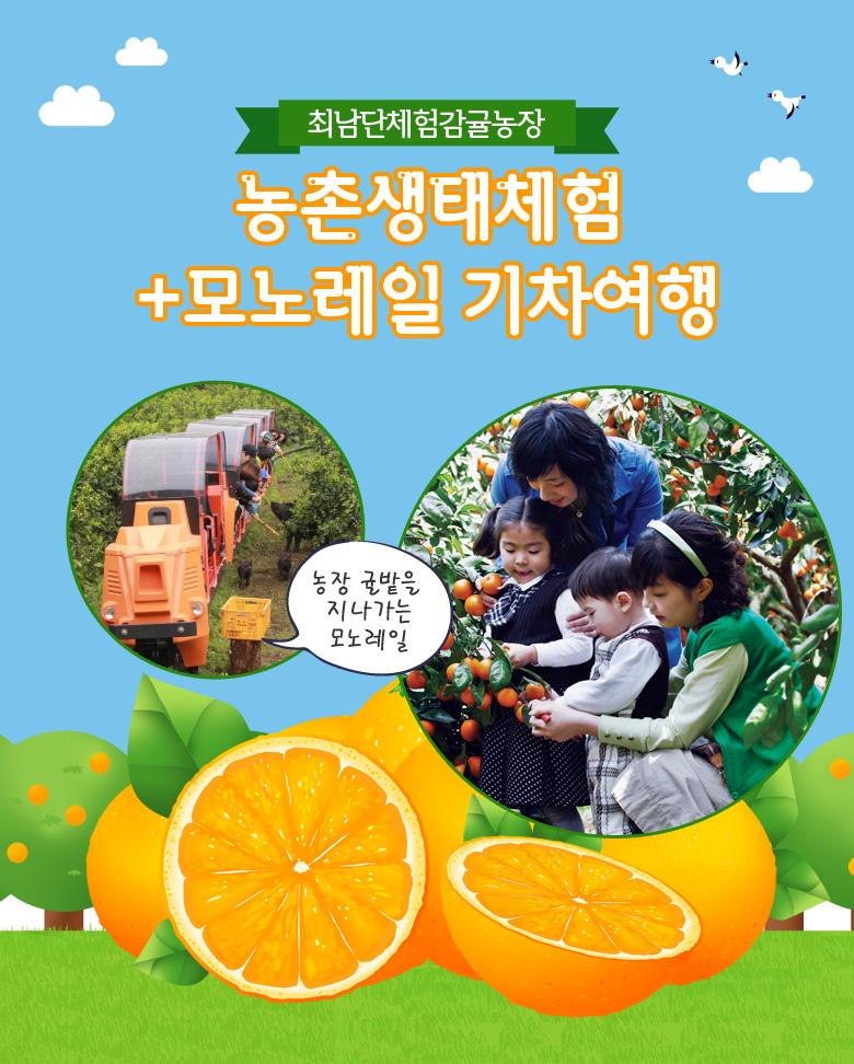 최남단감귤체험농장_농촌생태체험+모노레일기차여행_상.jpg