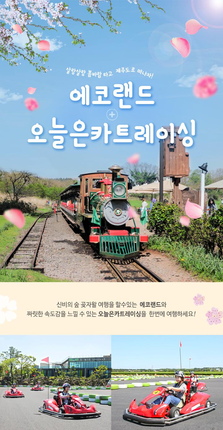 2018봄_에코랜드+오늘은카트레이싱_(자사몰)상.jpg