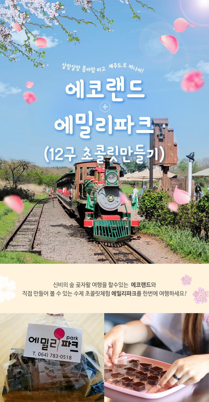 2018봄_에코랜드+12구초콜릿만들기_(자사몰)상.jpg