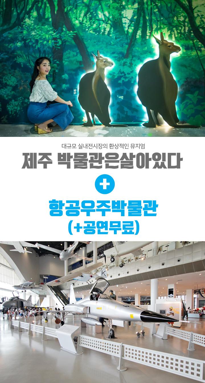 박물관은살아있다+항공우주박물관_공연무료_01.jpg