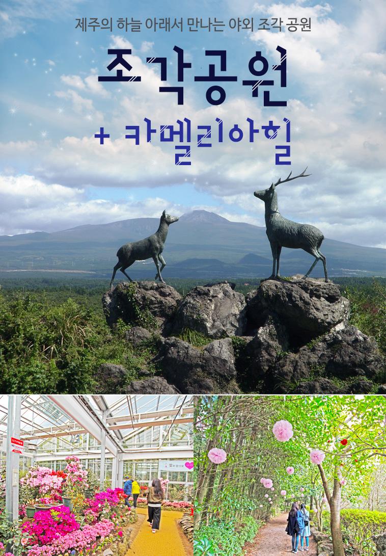 조각공원-햇살숲속+카멜리아힐 (2).jpg