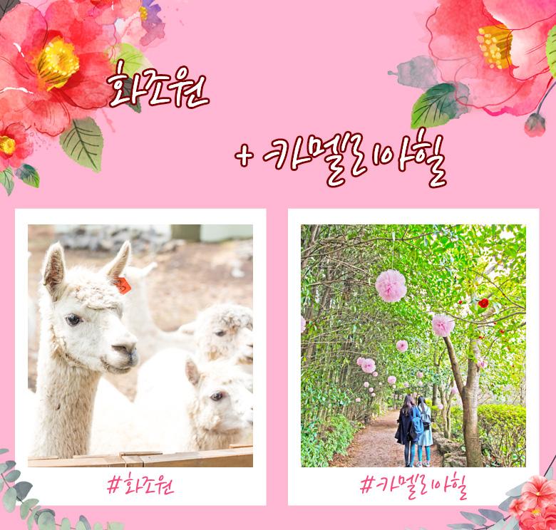 23_화조원+카멜.jpg