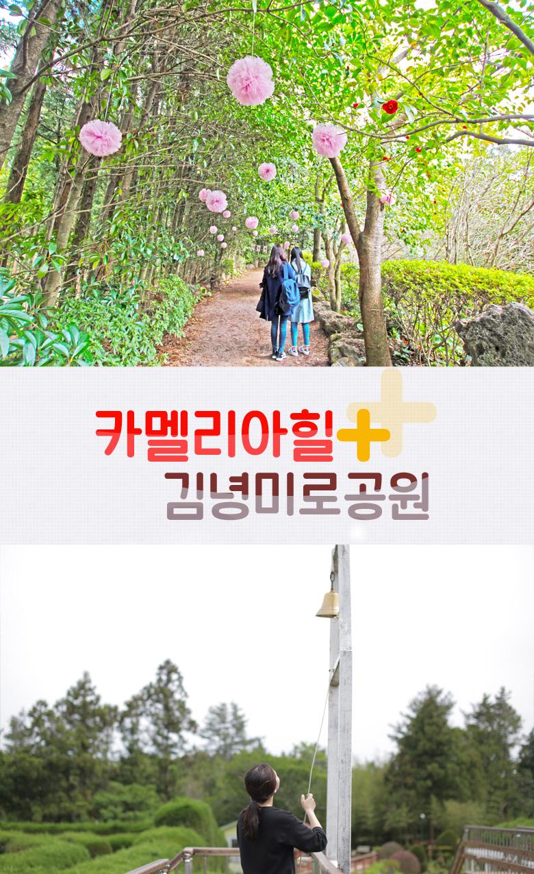카멜리아힐+김녕미로공원 (2).jpg