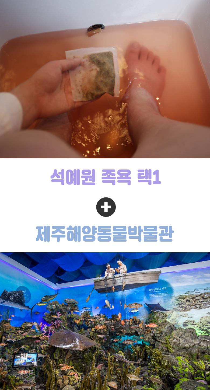 석예원족욕+제주해양동물박물관_01.jpg