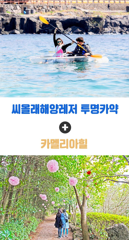 씨올래해양레저투명카약+카멜리아힐_01.jpg
