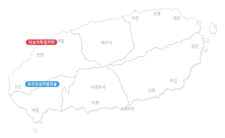 유리의성마법의숲+타보카투명카약-1인(애월-한담해안)_02.jpg