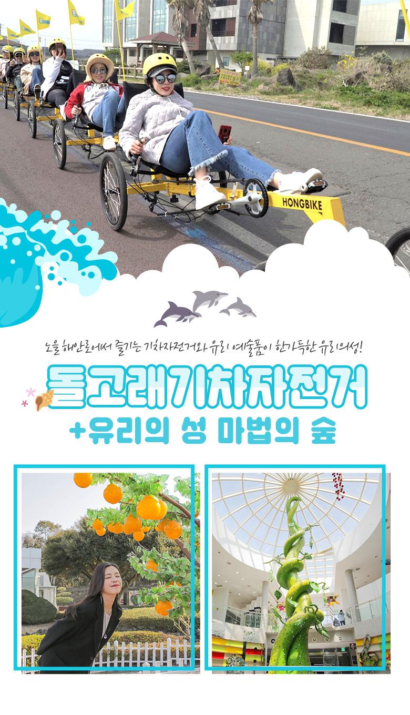 돌고래기차자전거+유리의성마법의숲.jpg