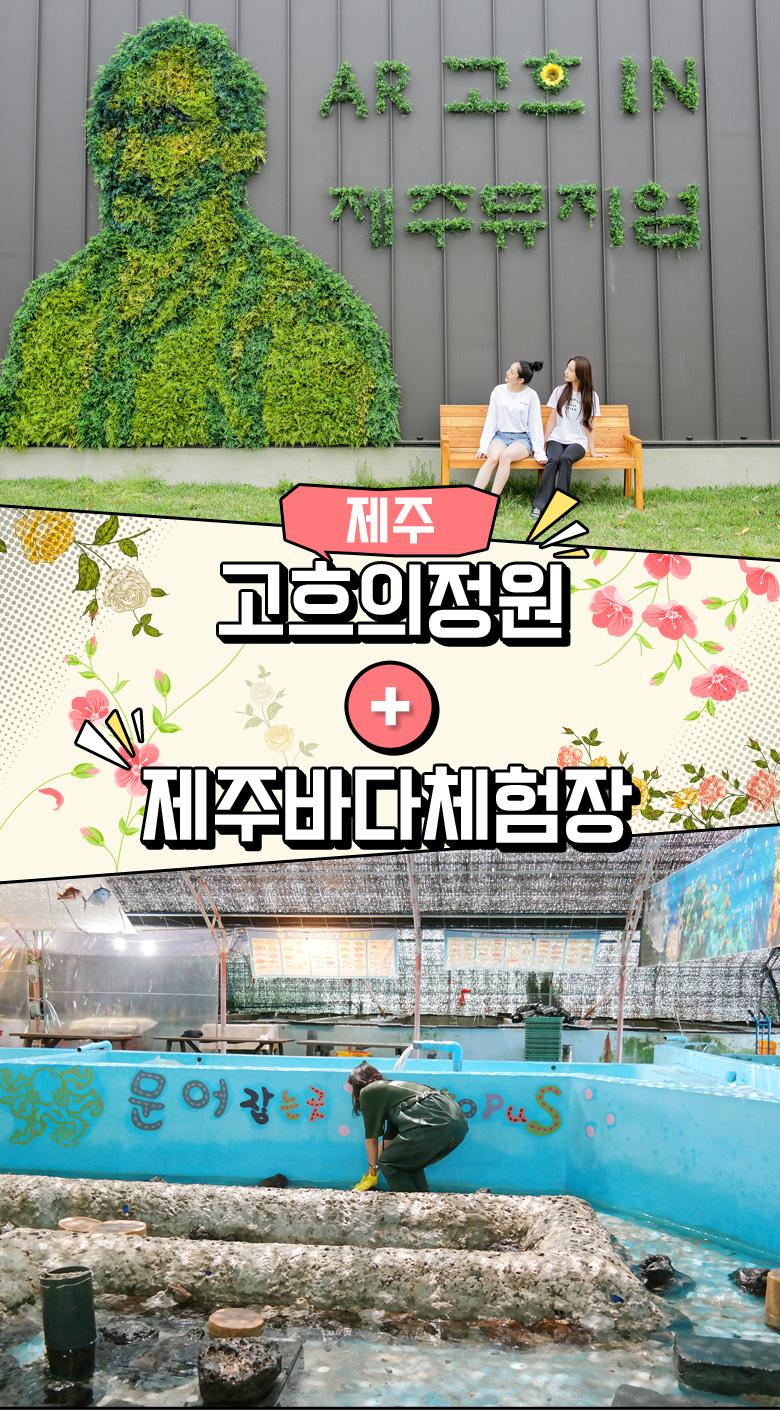 고흐의정원+제주바다체험장_01.jpg