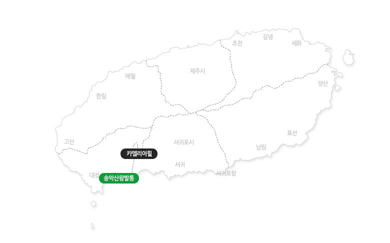 송악산왕발통킥보드야간+카멜리아힐_지도.jpg