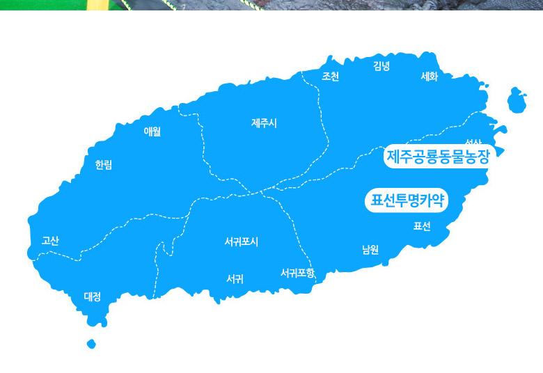 표선투명카약+제주공룡동물농장_02.jpg