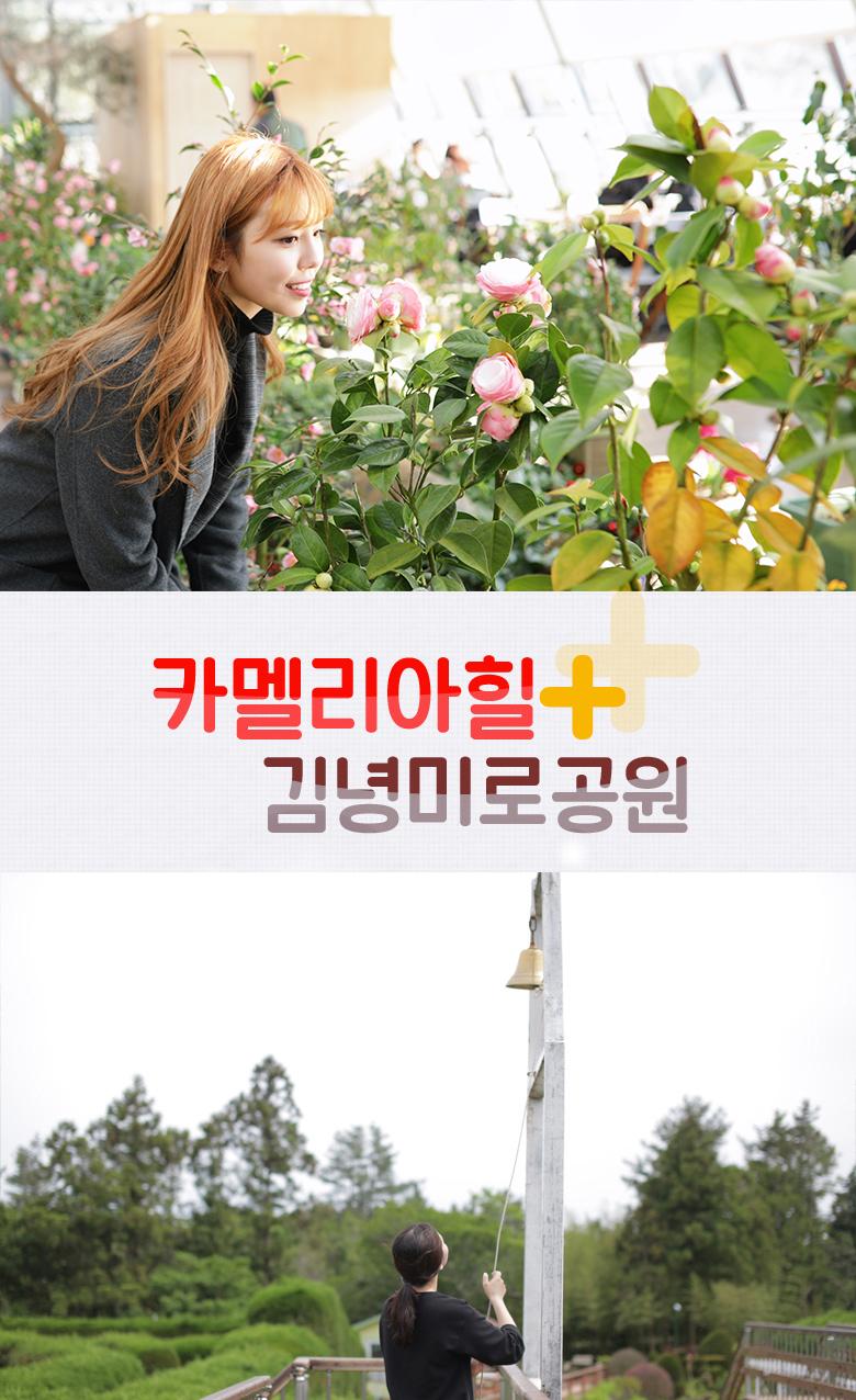 카멜리아힐+김녕미로공원.jpg