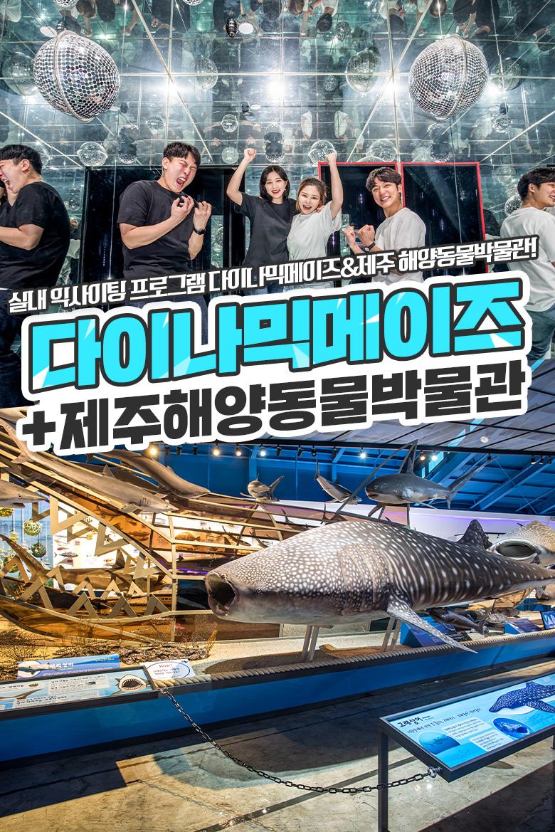 다이나믹메이즈+제주해양동물박물관.jpg