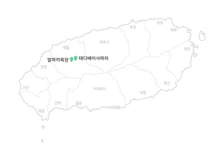 알파카+테디베어사파리_지도.jpg