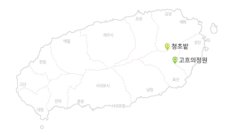 청초밭+고흐의정원_02.jpg