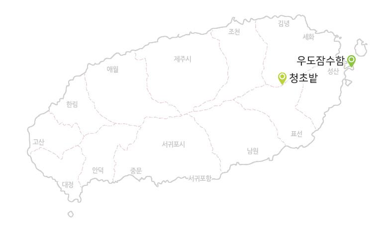 청초밭+우도잠수함_02.jpg