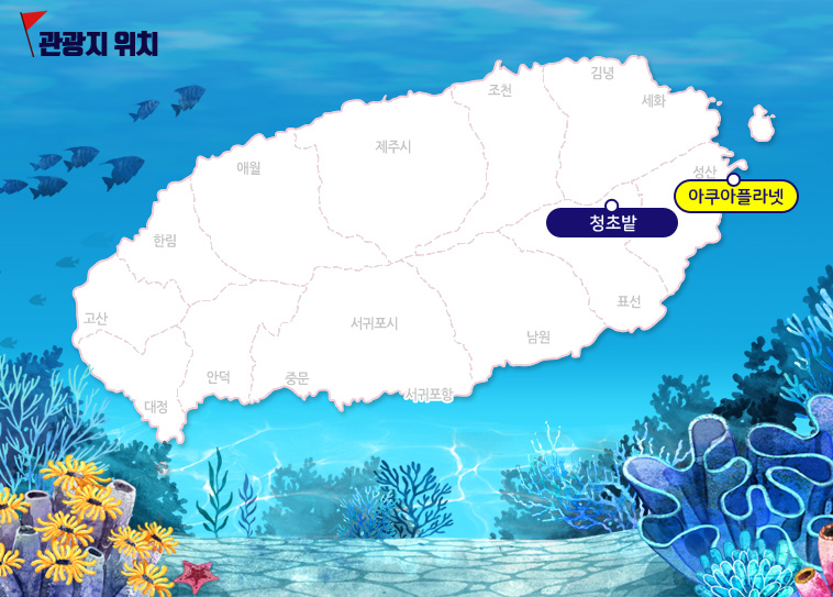아쿠아+청초밭_02.jpg