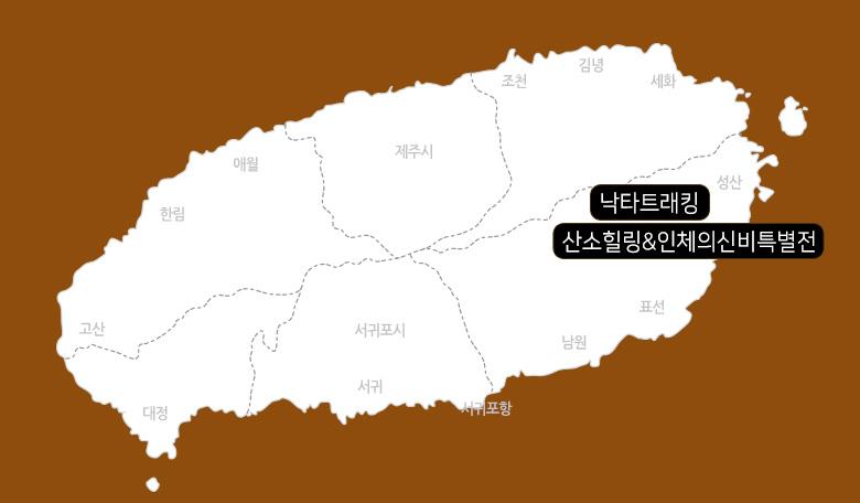 산소힐링&인체의신비특별전+포니밸리_03.jpg
