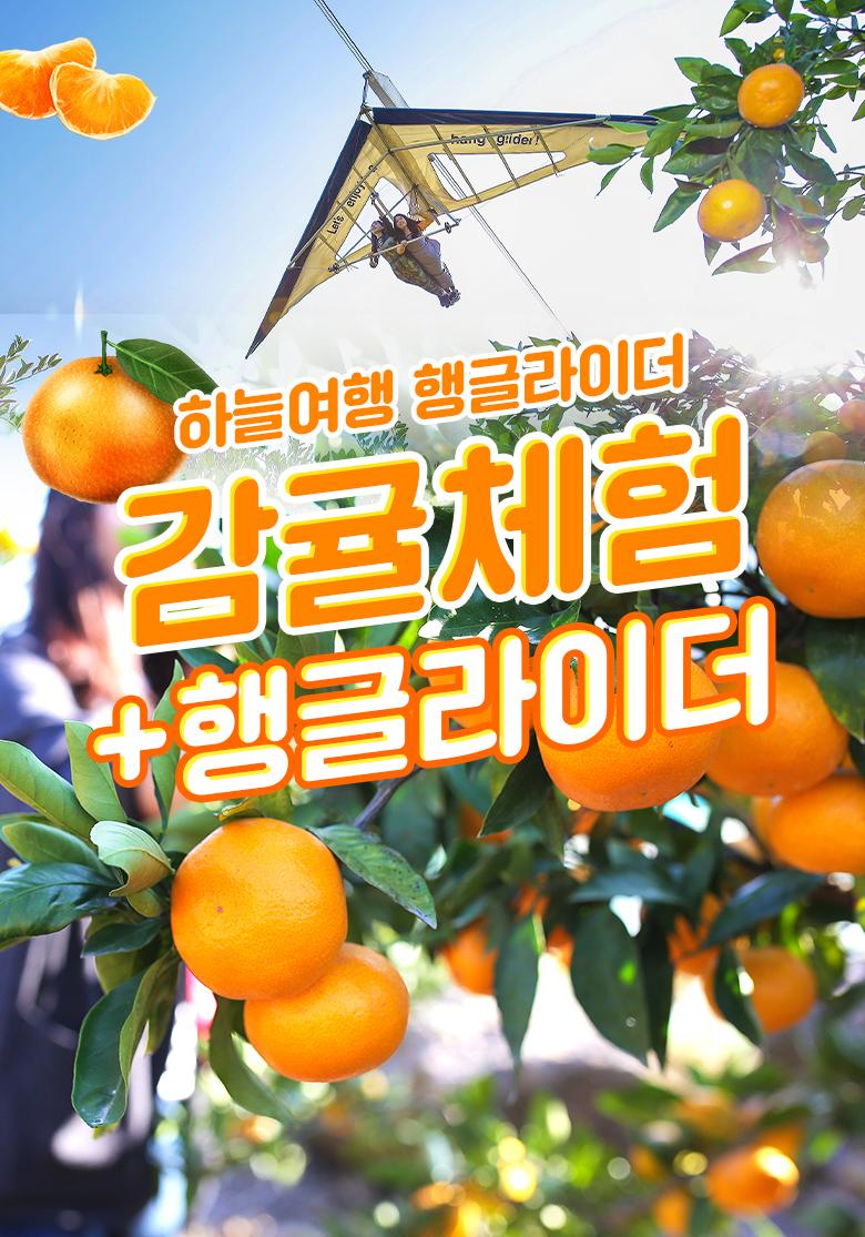 행글라이더감귤체험+행글라이더_01.jpg