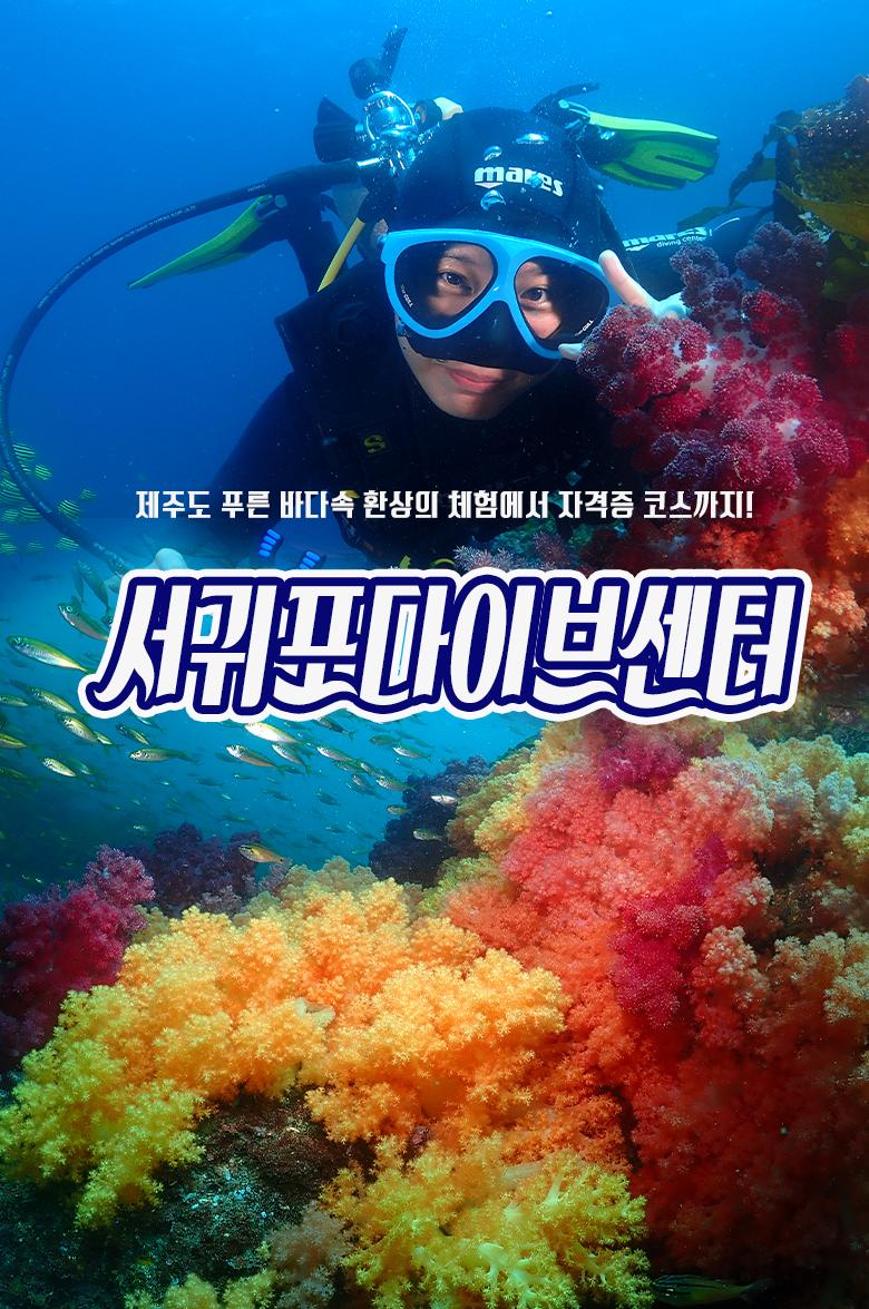 서귀포다이브센터-섬체험다이빙-인트로.jpg
